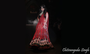 Chitrangada Singh in Traditional Clothes Wallpaper Download