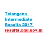 Telangana Intermediate Results 2017