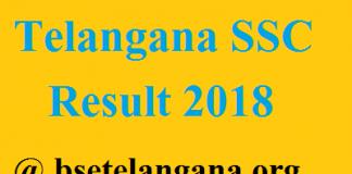 Telangana SSC Result 2018 bsetelangana.org