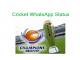 Cricket WhatsApp Status in hindi