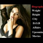 nidhi agarwal wiki biography upcoming movies list