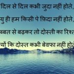 Friendship Day 2017 Quotes in hindi