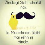 Mustache status in Hindi Language